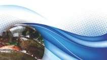 cartão de visita Açougue