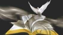 cartão de visita Artigos religiosos