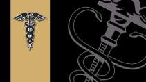 cartão de visita Contabilidade elegante: simbolo e cinza com preto