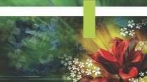 cartão de visita Floricultura