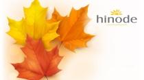 cartão de visita Hinode fidelidade: folhas e amarelo com branco