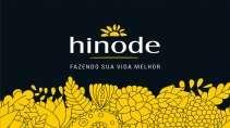 cartão de visita Hinode luxo: preto com amarelo
