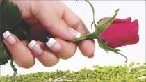 cartão de visita Manicure criativo: flor e branco com rosa e verde