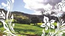 cartão de visita Paisagem