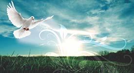 cartão de visita Religioso e Espiritual