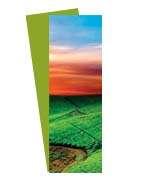 Visite meu cartão | Marcador de página | Couchê fosco e verniz localizado | 300g - 4X4 | 273mm x 51m