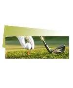 Visite meu cartão | Marcador de página | Couchê verniz total fr | 300g - 4X4 | 153mm x 51m